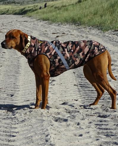 Onlineshop | RR DOG`s WARE ® Hundebekleidung nach Maß