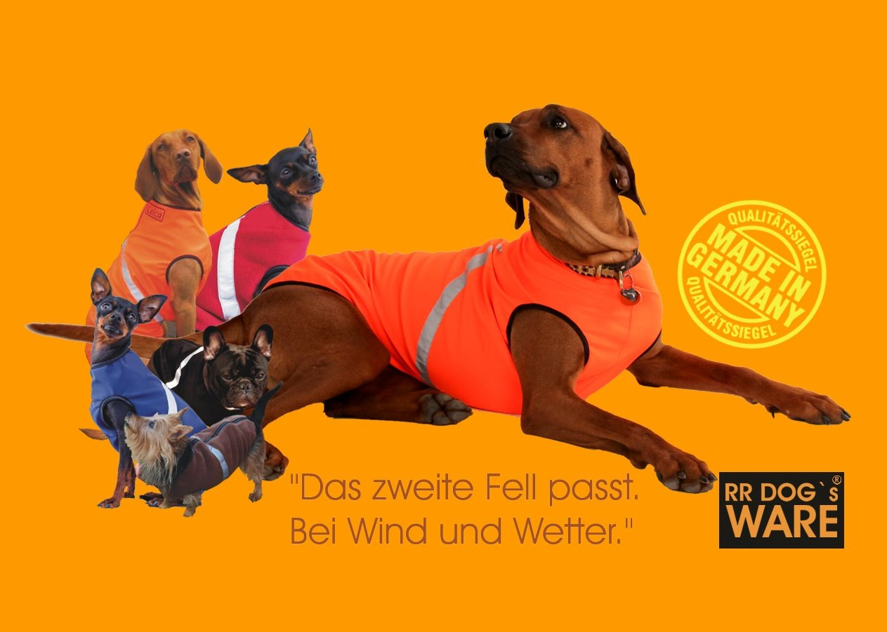 Verschiedene Hunde , die einen Hundemantel von RR DOG`s WARE ® tragen