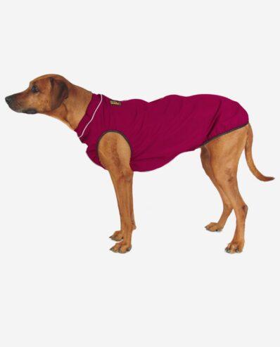 Hunderegencape Pinkbeere mit Leuchtbiese RR DOG`s WARE