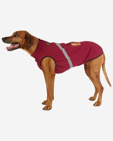 RR DOG`s WARE® Hundemantel Softshell Wasserdicht Berry