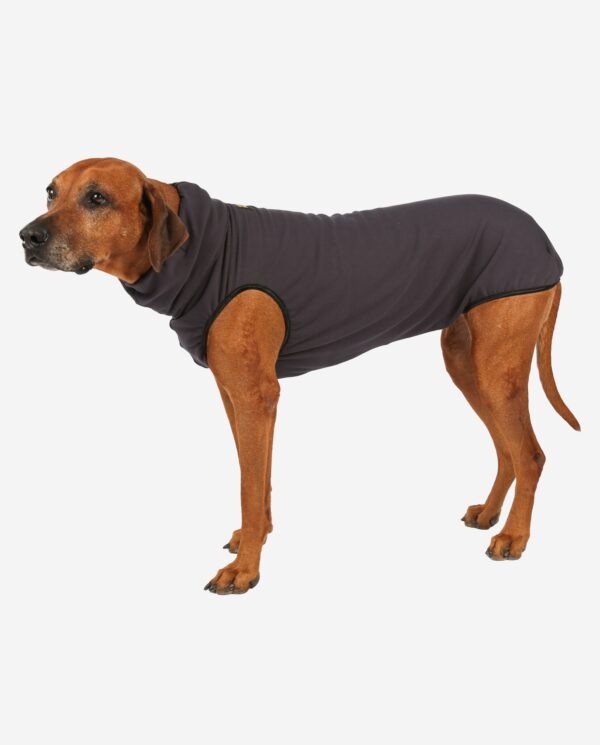RR DOG`s WARE® Hundepullover anthrazit