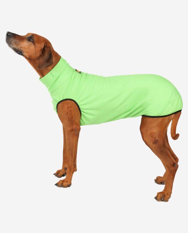 RR DOG`s WARE® Hundepullover apfelgrün
