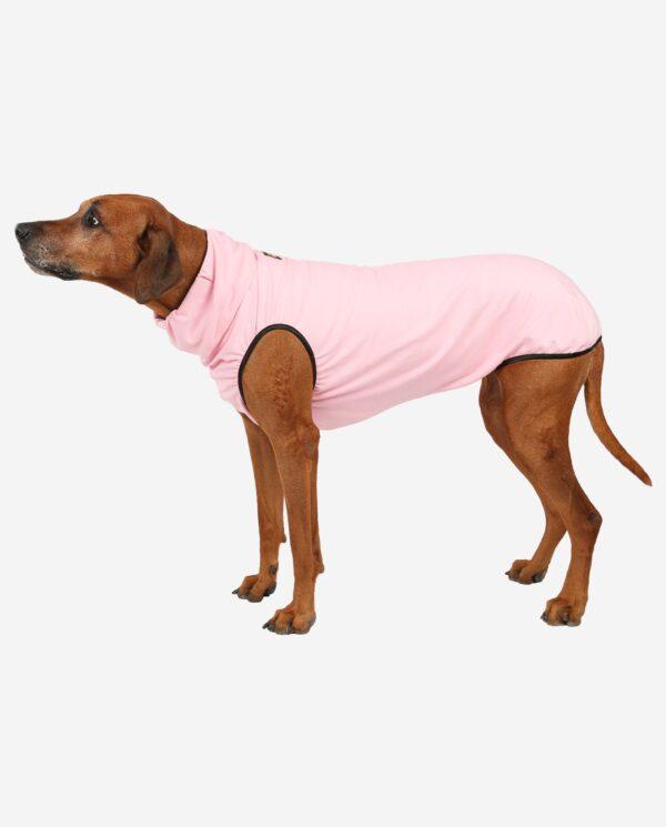 RR DOG`s WARE® Hundepullover rosa