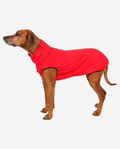 RR DOG`s WARE® Hundepullover rot