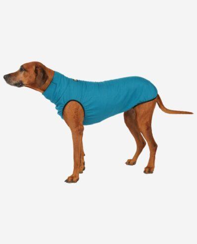 RR DOG`s WARE® Hundepullover türkis