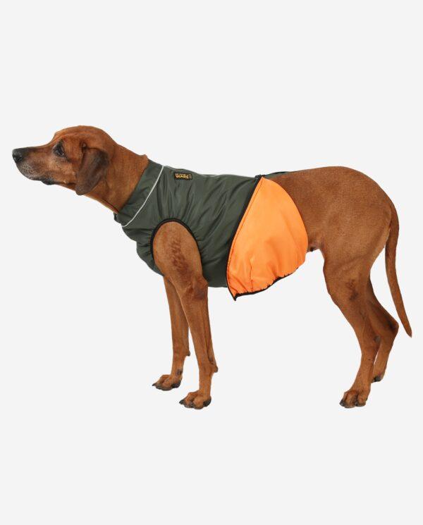 RR DOG`s WARE® Hunderegenjacke Khakigrün strapazierfähig Futter orange