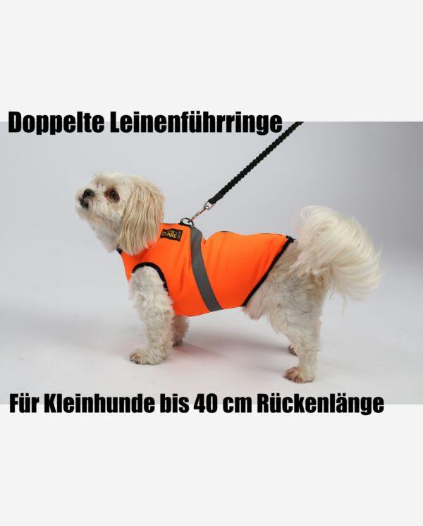 RR DOG`s WARE® Doppelte Leinenführring Hundegeschirr