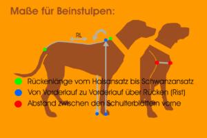 Maßfigurine Hund für Beinstulpen vermessen für RR DOG`s WARE Hundebekleidung