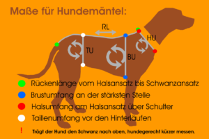 Maßfigurine Hund vermessen für RR DOG`s WARE Hundebekleidung