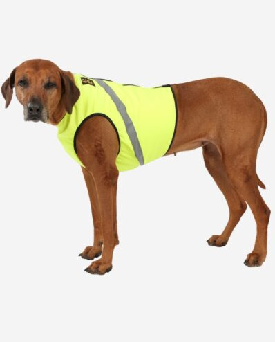 RR DOG`s WARE® Warnweste Für Hunde