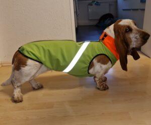 Basset Hound Hundemantel Softshell wasserdicht Hellgrün RR DOG`s WARE Hundebekleidung nach Maß