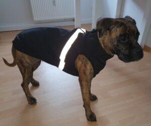 Deutscher Boxer Hundemantel Softshell wasserdicht Marineblau RR DOG`s WARE Hundebekleidung nach Maß