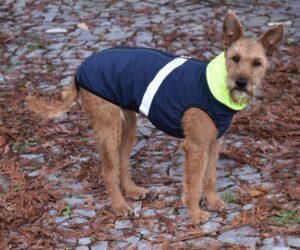Foxterrier Hundemantel Softshell wasserdicht marineblau RR DOG`s WARE Hundebekleidung nach Maß