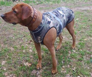Rhodesian Ridgeback Hundemantel Softshell Camouflage RR DOG`s WARE