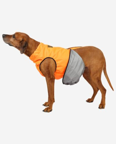 RR DOG`s WARE® Extreme Cordura ALLROUND Orange