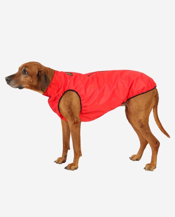RR DOG`s WARE® Extreme Cordura ALLROUND Rot