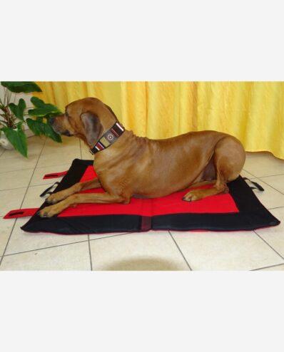 Hundekühldecke Multifunktion Großer Hund