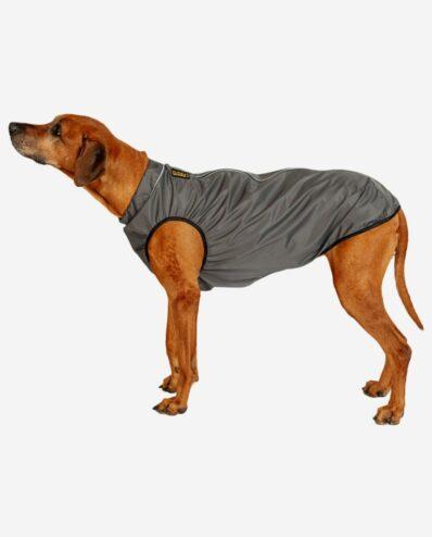 RR DOG`s WARE® Hunderegenjacke dunkelgrau strapazierfähig