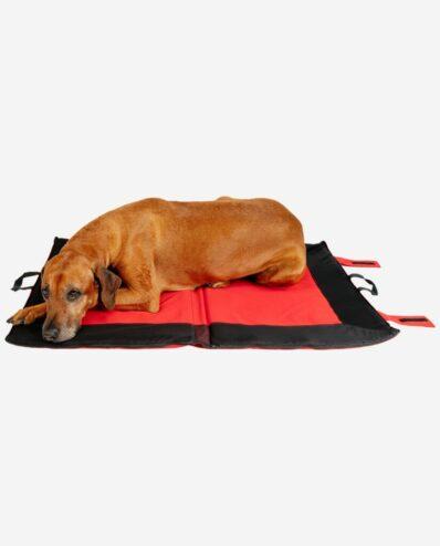 Hundekühldecke Multifunktion Groß Mit Rhodesian Ridgeback RR DOG`s WARE