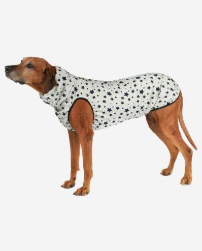 Hundepullover Jumper Design Sterne RR DOG`s WARE Hundebekleidung